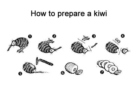 how to prepare a kiwi arjen s travels